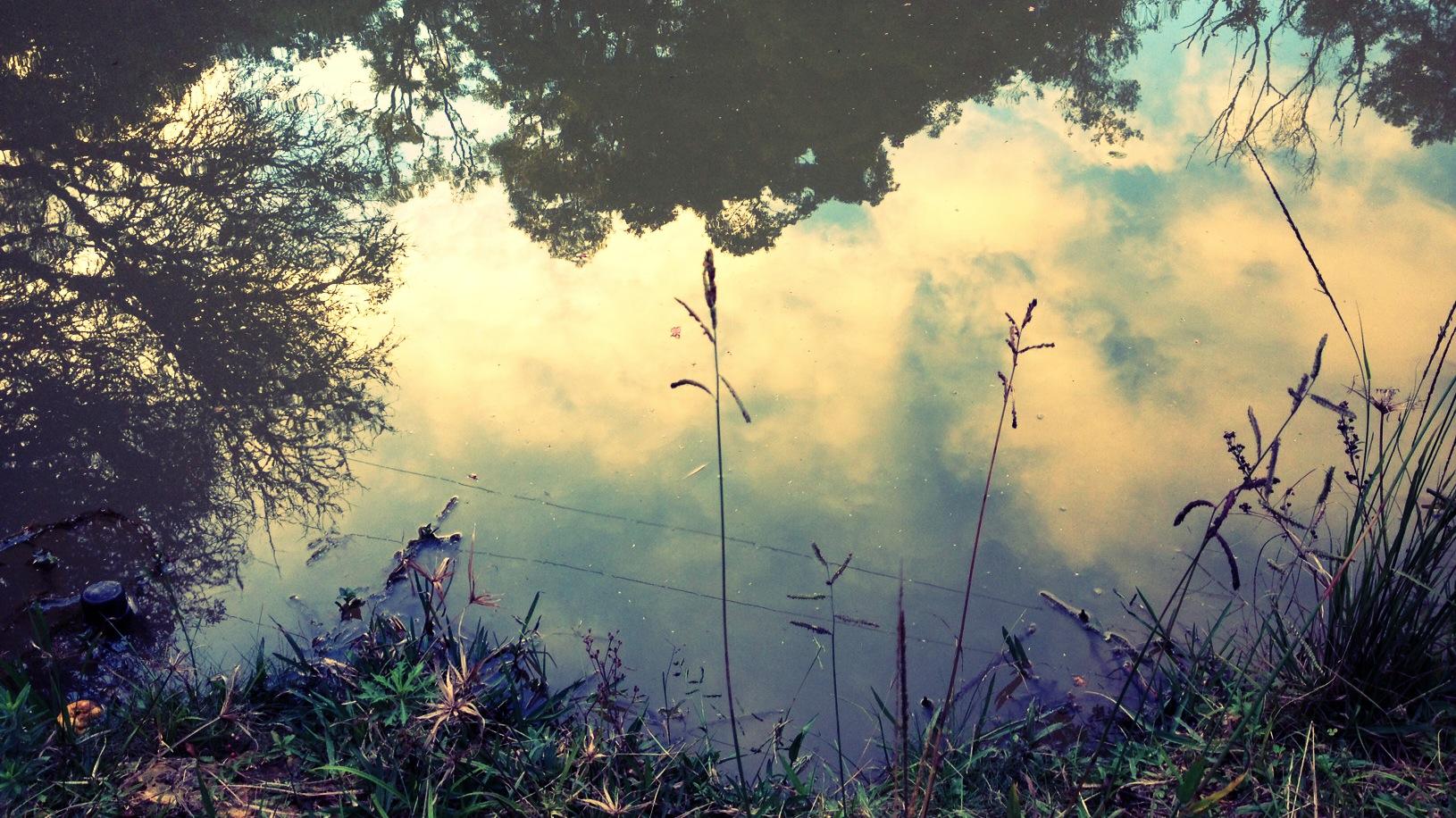 foto_reflexo_Fotor